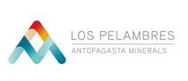 logo_los_pelambres